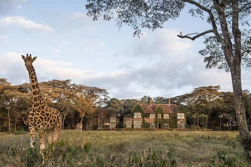Giraffe Manor Kenya 2